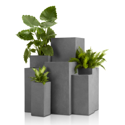 Concrete Planter (Square)